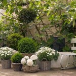 All Hands Deck Easy Garden Design Ideas Exclusives From Msn