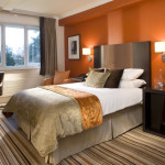 Amazing Paint Colors For Bedrooms Warm Bedroom And Study