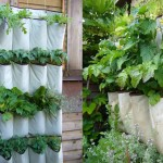 Amazing Vertical Garden Designs For Growing Veggies Any Space