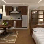 Apartment Studio Interior Designs