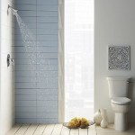 Attain The Best Bathroom Shower Designs Small Master