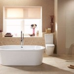 Bathroom Decorating Ideas For Home Improvement Where Find Them
