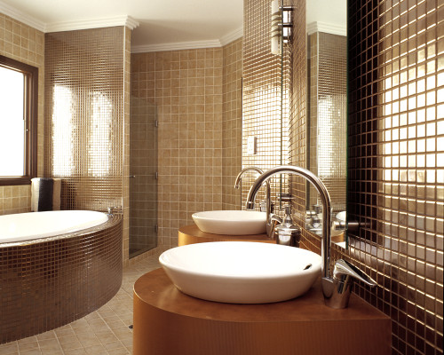 Bathroom Design Idea Interior Modern