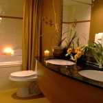 Bathroom Design Tool Ideas Pictures And Home