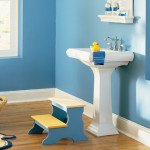 Bathroom Themes For Home Decoration