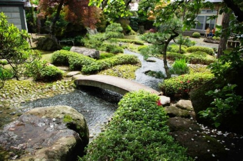 Beautiful Natural Pond Layout Ideas For Backyard And Garden