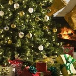 Best Decorated Christmas Trees Bing Images