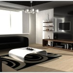 Black And White Living Room Decorating Ideas What The