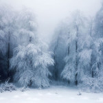 Breathtaking Examples Winter Landscape Graphy Demilked