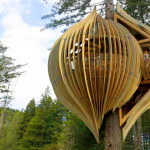 Build Your Own Tree House Modern Design