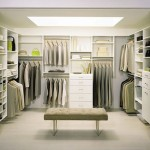 Built Cabinets Walk Closet Design Ideas Pictures For Hanging