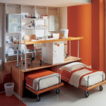 Bunk Beds Boys Room Ideas Pictures And