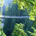 Capilano Suspension Bridge Simple Beauty