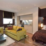 Cheap Brown Ideas Decorate Your Apartment