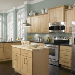 Choosing The Right Cabinets For Your Current Kitchen Wall Colors