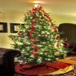 Christmas Tree Decorating Ideas For Trees Flowers And Plants