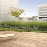 Clean Simple Peacful Roof Garden Design