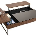 Coffee Table Storage Space From Concept