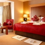 Color Bed Room Home Designs Stylish Luxury