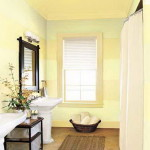 Color Ideas For Small Bathroom Elegant Paint