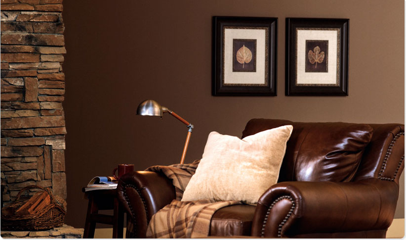 Color Schemes For Living Rooms Room Pictures