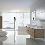 Contemporary Bathroom Design Ideas Out Based Rating