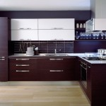 Contemporary Ideas Luxury Kitchen Cabinets Designs About Project