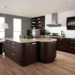 Contemporary Kitchen Interior Design Pictures Gallery