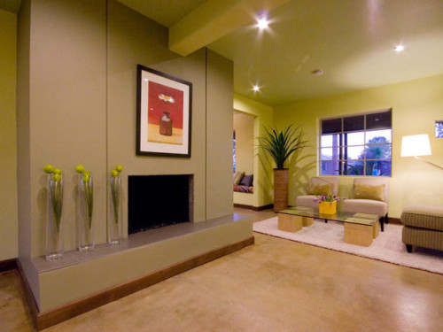 Contemporary Living Rooms Amy Bubier Designers Portfolio Hgtv