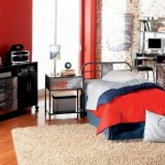 Cool Room Ideas For Teenage Guys New Pictures