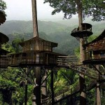 Costa Rican Tree House Community Becomes Reality News Concrete