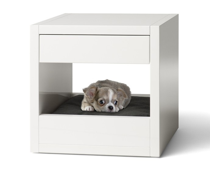 Cute Pet Bed And Bedside Table For The Home