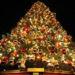 Decorated Christmas Tree Best Places For Holiday Decoration Shopping