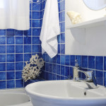 Designs Ideas Blue Bathroom Theme Imagexsotic