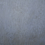 Dirty Grey Wall Texture Textures For Shop Free