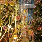 Finderclick Search Decorating Christmas Lights Real Tree