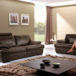 First Class Care For Leather Furniture Demir