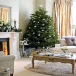 For Decorate Your Home Christmas Design
