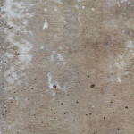 Free High Quality Concrete Wall Textures Bcstatic