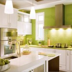 Fresh Colors For Stylish Small Kitchens Pictures