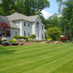 Front Yard Landscaping Perfect Choice Plants Most Beautiful