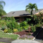 Front Yard Plants Inspiration Ideas Helpful Tips When Selecting The