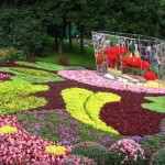 Garden Everything About Interior Design And Home Decoration