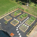 Garden Ideas Useful Designs Concept Pictures And