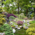 Garden Landscape Ideas Your Home Japanese