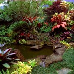 Garden Landscape Pictures Aquaponics Systems Design