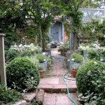 Garden Path Gardening Ideas