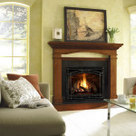 Gas Fireplaces For Your Home Top Vented Ideas