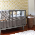 Gender Neutral Nursery Colors Ideas Pictures Babies