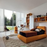Good Room Ideas For Teenage Girls Contemporary